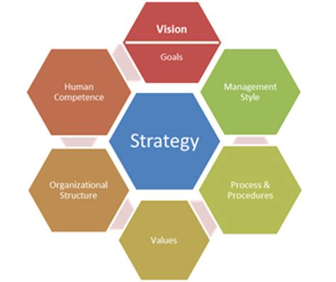 What Is a Business Organization? - Studycom